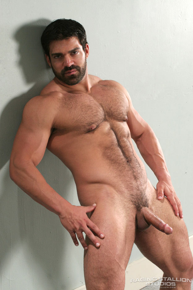 reference vince ferelli nice and hairy