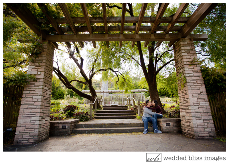 Wedded bliss images artful experiential wedding photography amy jerry san francisco for San francisco botanical gardens