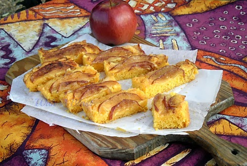 apple & cinnamon custard bars