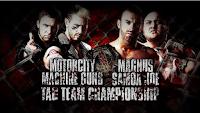 Lockdown y su Tag team combate en la jaula de acero
