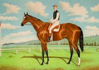 at yarışı diyarbakır foto
