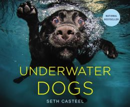 http://www.amazon.com/Underwater-Dogs-Seth-Casteel/dp/0316227706/ref=sr_sp-atf_image_1_1?s=books&ie=UTF8&qid=1398102075&sr=1-1&keywords=underwater+dogs