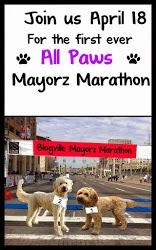 Mayorz Marathon