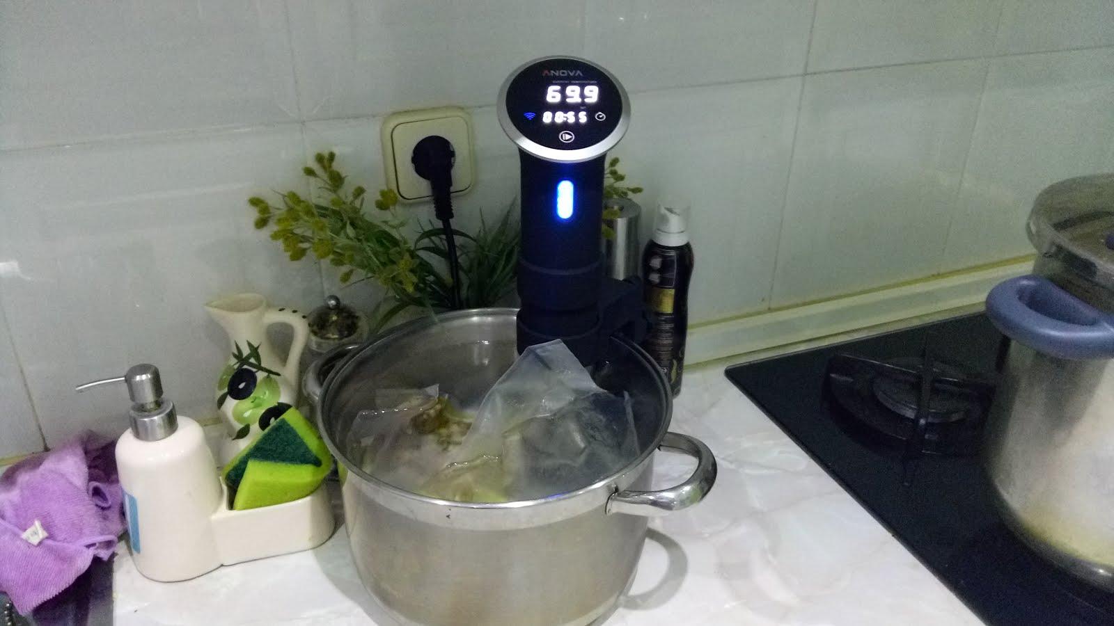 Blog de cocina al vacío a baja temperatura