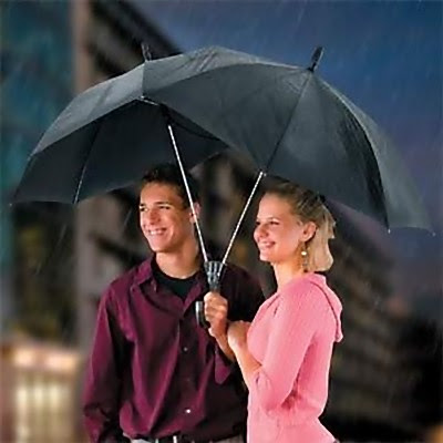 Unusual Umbrellas and Creative Umbrella Designs (17) 4