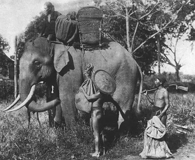 Tư liệu ảnh về Tây nguyên