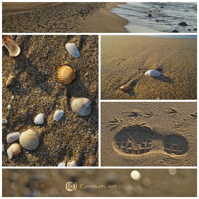 collage-conchas-mar-fotografia-carolum-art