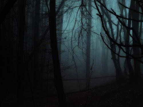 Tổng hợp truyện kinh dị Creepypasta (Phần 76)