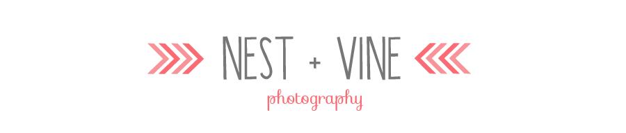 nest + vine