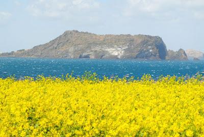 Pulau Jeju, Korea Selatan