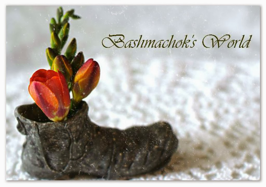 Bashmachok's World