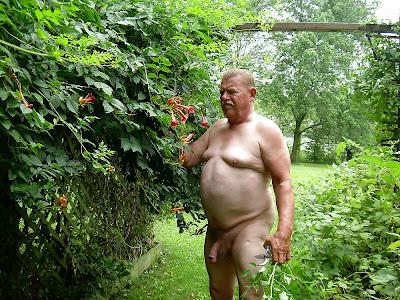 O jardim das tentações