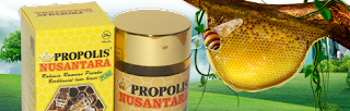 propolis nusantara