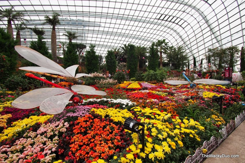 mid autumn the flower dome