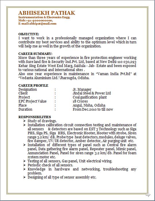 professional resume b tech instrumentation