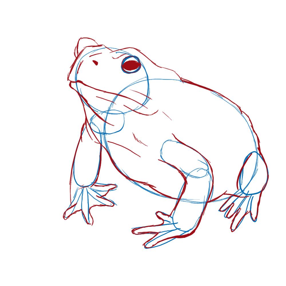Dibujo de un sapo (tutorial) - Taringa!