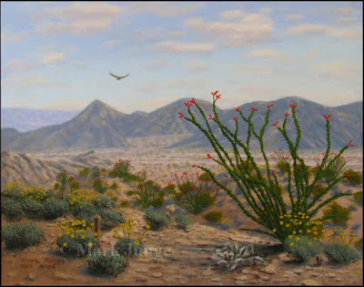 California,CA,desert,Sonoran,ocotillo,Deep Canyon,Palm Desert,Palm Springs,wildflowers,brittlebush,Encelia,wash,washes,hawk,rugged,mountains,spring