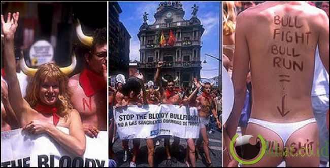 Demo bugil tolak adu banteng di Spanyol