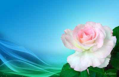 Artline Rose Wallpaper : Rose on Wave