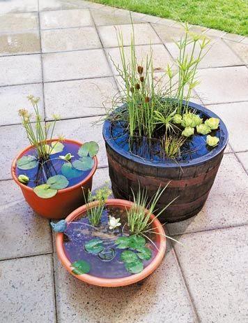Mini Estanques para Pequeños Jardines