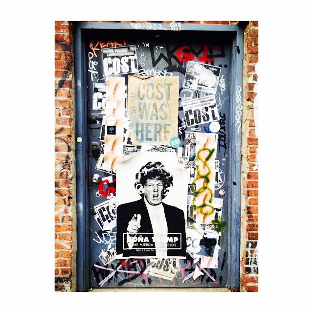 Doña Trump con Rolos. Poster