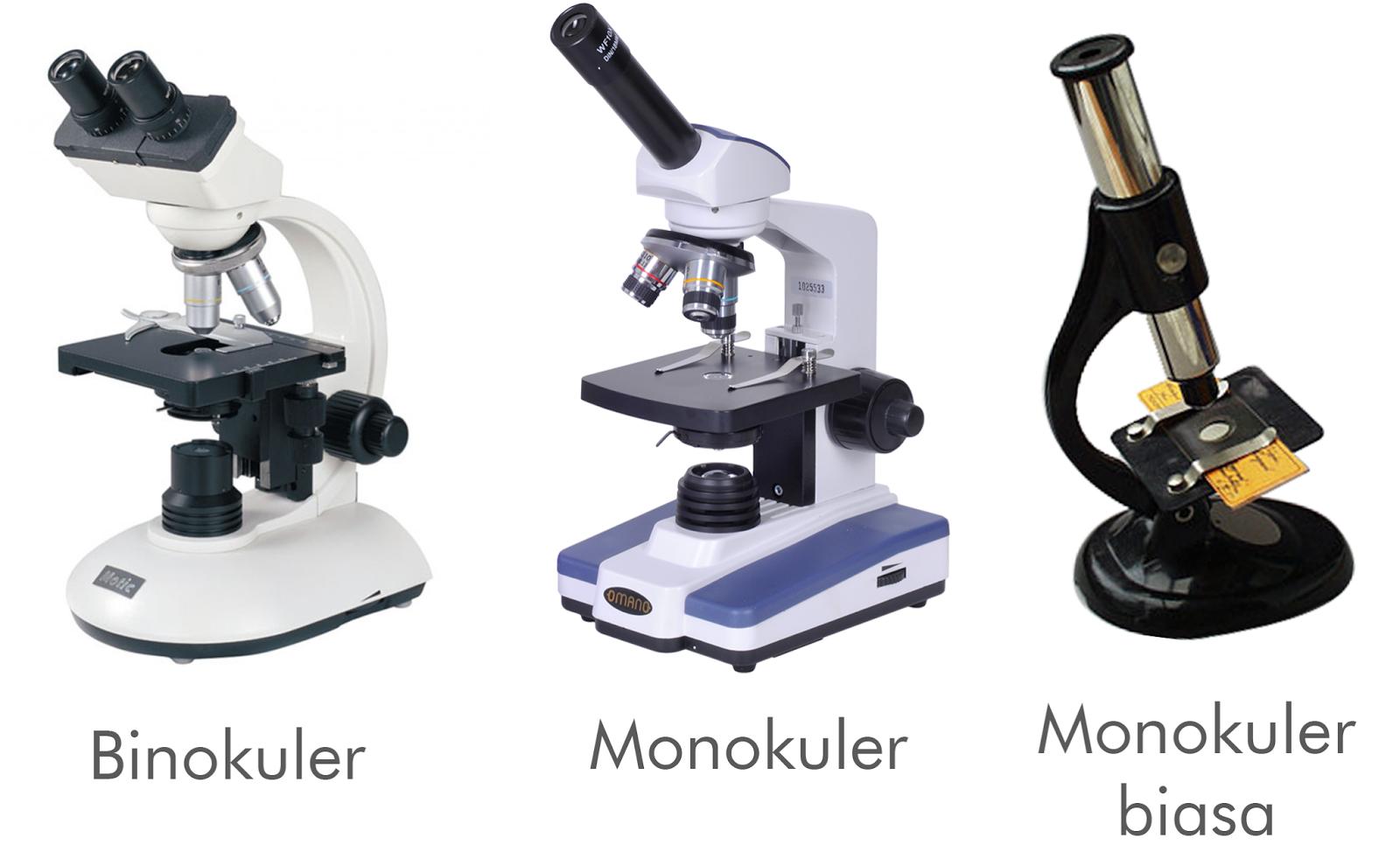 Bagian mikroskop binokuler dan fungsinya jual mikroskop cahaya