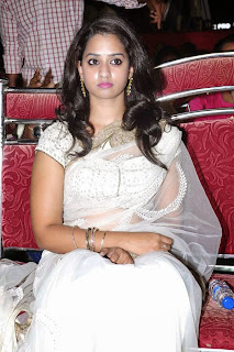 Actress Nanditha Raj Picture Gallery in Saree at Krishnamma Kalipindi Iddarini Movie Audio Launch 1