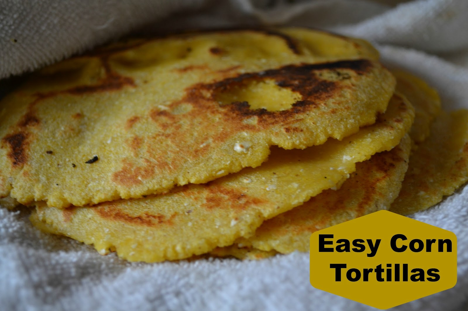 Homemade Corn Tortillas - Just Take A Bite