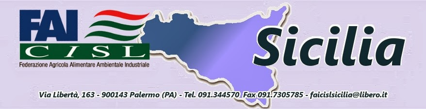 http://www.faicislsicilia.com/index.php?option=com_docman&task=doc_download&gid=569