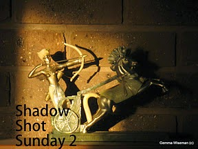Shadow Shot Sunday 2