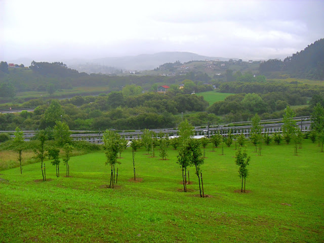Paisaje del municipio de Miengo