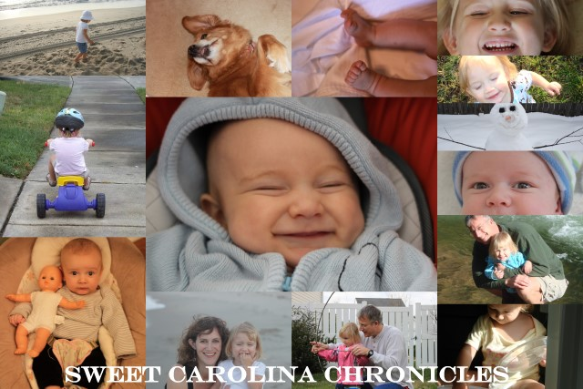Sweet Carolina Chronicles