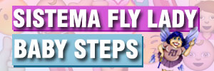 Baby Steps - Fly Lady