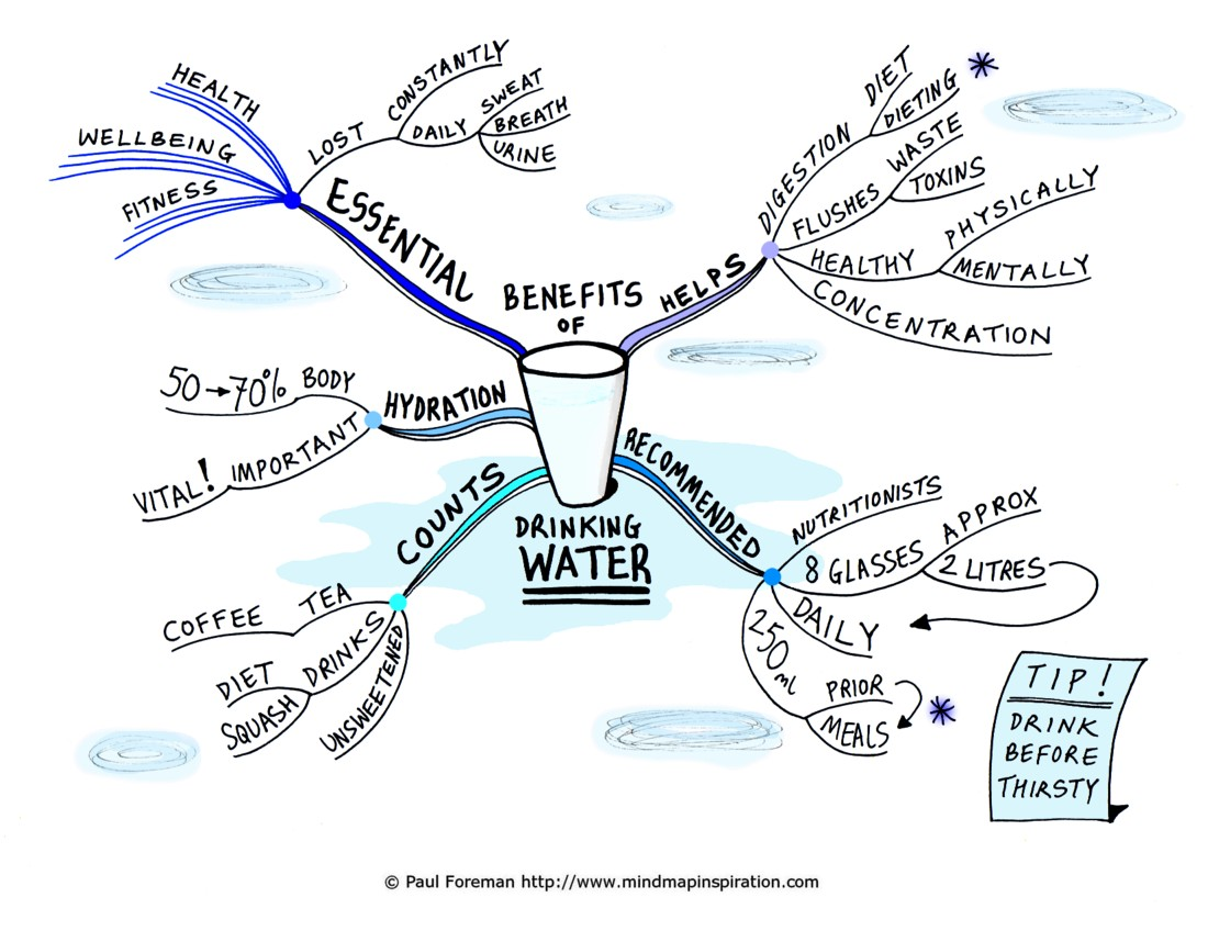 the importance of drinking water The importance of drinking water daily is often overlooked, even though water is essential for every function in the human body.