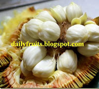marang, madang, tarap, fruits and health, dailyfruits.blogspot.com