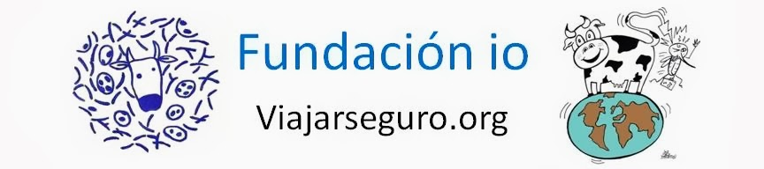 Fundación io
