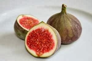 buah terlarang