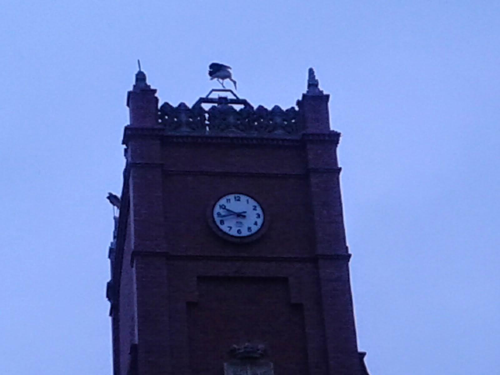 Ayuntamiento de Becerril