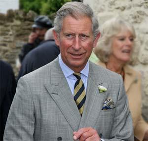 Prince Of Wales Check Grey Fox