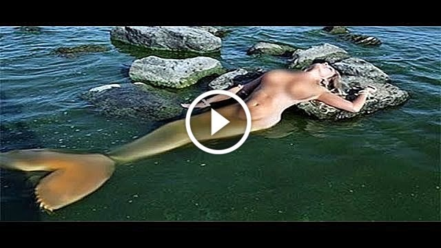 Real mermaids found on beach