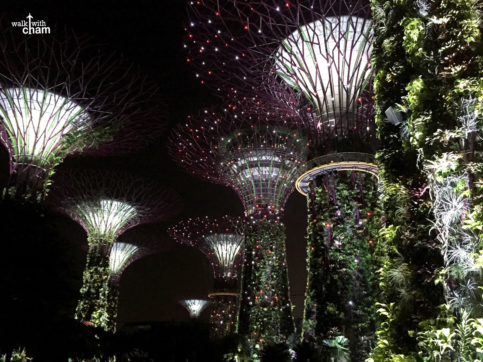 each tree bursted with illumination of different colors in sync together with the music the lights and sound show in gardens by the bay should not be