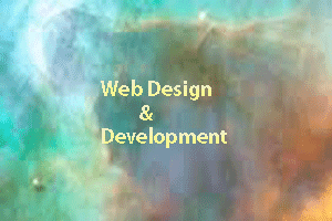 Web Development Bangladesh:   Flash Web Design of SEO Friendly