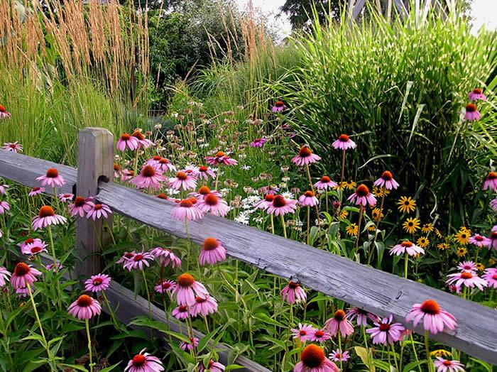 jardines rsticos