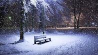 THE WINTER