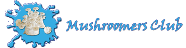 mushroomers club