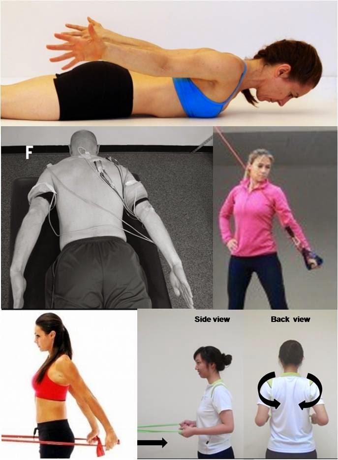 Valoración del movimiento y prescripción de ejercicio: Ejercicios ...