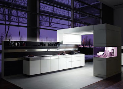 Kitchens Designs 2011