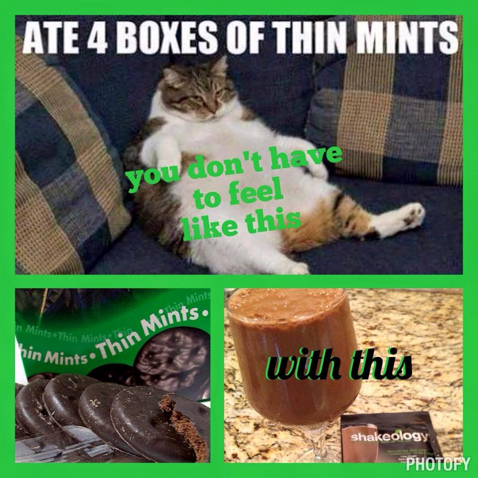 www.alysonhorcher.com, thin mint shakeology, thin mints, girl scout cookie inspired shakeology reipes, healthy recipes, healthy shakes, thin mint crazy, thin mint humor, thin mint girl scout cookies