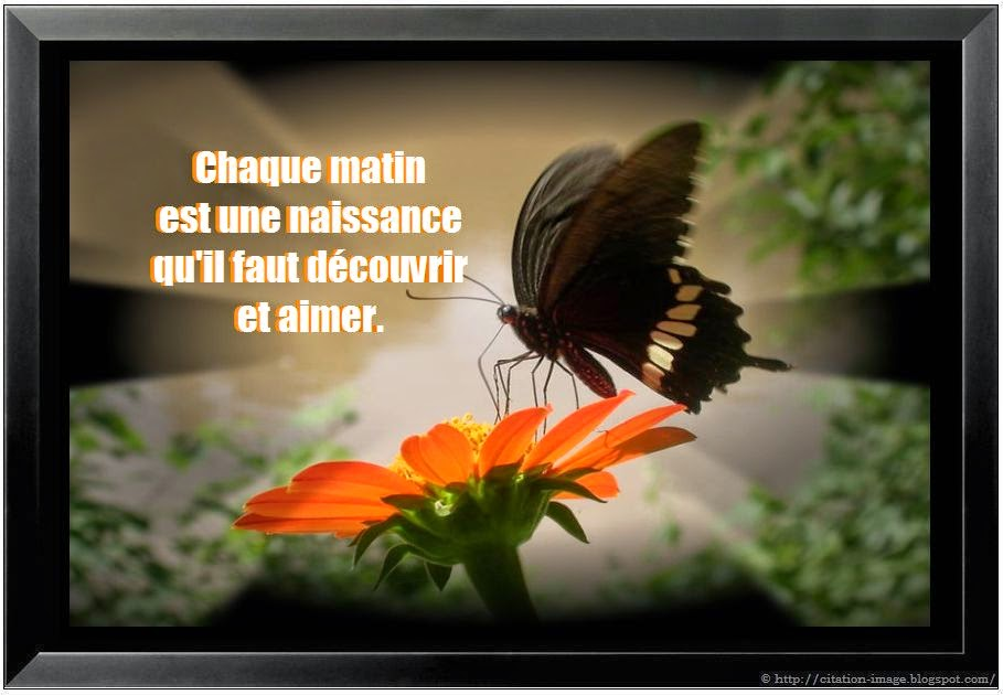 Jolie citation du matin en image