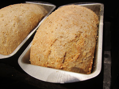 My Next Cooking Class is Basic Mixer-less Bread Baking This week!   June 16th